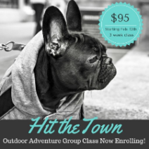 miami group dog class outdoor adventure