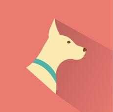 dog training company miami
