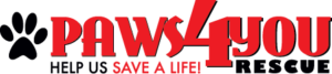 paws4you_logo
